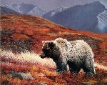 Alaskan Autumn (Grizzly Bear) by Charles Frace