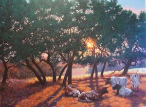Longhorn Lullaby Original by C. J. Latta