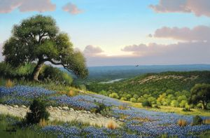 Hill Country Vista by Larry Prellop
