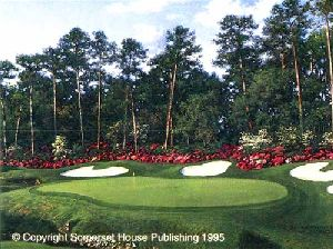Augusta National by Larry Dyke