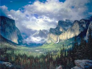 Yosemite Valley by Larry Dyke